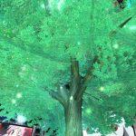 木が大きくなりました!